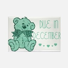 Green Marble Teddy Due December Rectangle Magnet