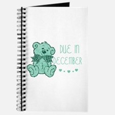 Green Marble Teddy Due December Journal