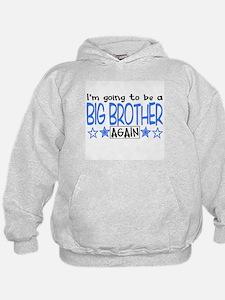 Big Brother Again! Hoodie
