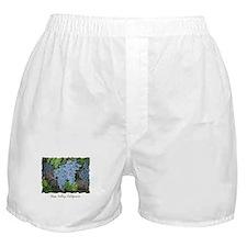 Napa Valley CA - Boxer Shorts