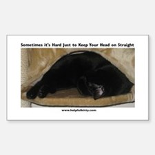 Head on Straight Kitty Rectangle Decal
