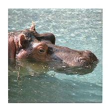Helaine's Hippo Tile Coaster