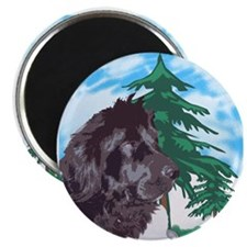 Newf with trees Magnet