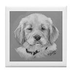Golden Retriever Puppy b/w Tile Coaster