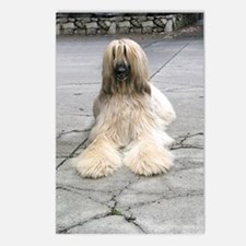 Helaine's Afghan Hound Postcards (Package of 8)