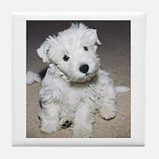 Westie Pup IAMTooCute! Tile Coaster