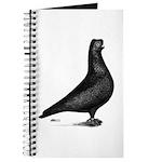 Prager Shortface Pigeon Journal
