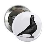 "Prager Shortface Pigeon 2.25"" Button"