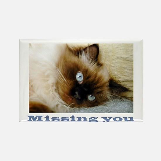 missing you.jpg Magnets