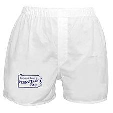 Pennsylvania Boy Boxer Shorts