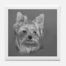 Yorkshire Terrier b/w Tile Coaster