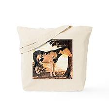 Horse Pinto Chiaroscuro Tote Bag