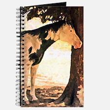 Horse Pinto Chiaroscuro Journal