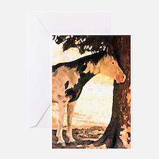 Horse Pinto Chiaroscuro Greeting Card