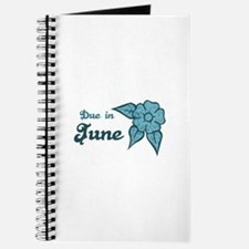 Due In June Blue Blossom Journal