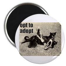 Opt To Adopt Cat Magnet
