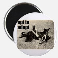 Opt To Adopt Cat Magnet