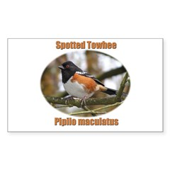 Spotted Towhee Rectangle Sticker 50 pk)