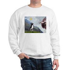 Creation of the Boston Sweatshirt