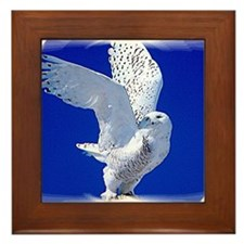 Talon Framed Tile