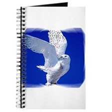 Funny Talon Journal