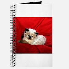 red pad.jpg Journal