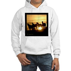 Sunset Horse Hoodie