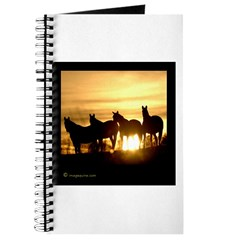 Sunset Horse Journal