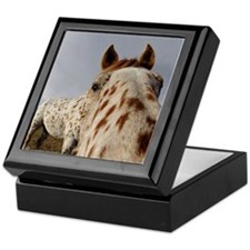 Humorous Equine Keepsake Box