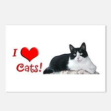 Nancy's Cat Postcards (Package of 8)