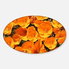 Helaine's California Poppies Oval Decal