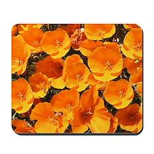 Helaine's California Poppies Mousepad