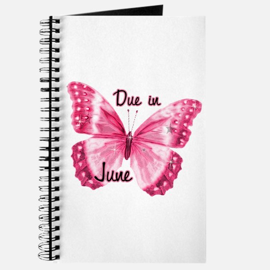 Due June Sparkle Butterfly Journal