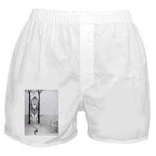 Cowardly Lion Boxer Shorts
