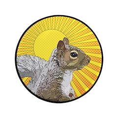 Pop Art Squirrel 3.5