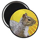 Pop Art Squirrel Magnet