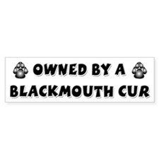Blackmouth Cur Bumper Bumper Sticker