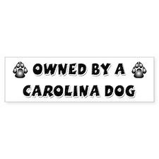 Carolina Dog Bumper Car Sticker
