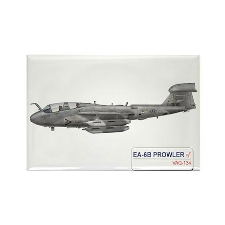 VAQ-134 Rectangle Magnet (100 pack)