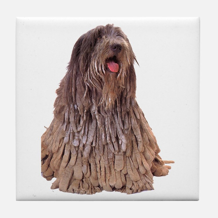 Bergamasco Sheepdog Sitting Tile Coaster