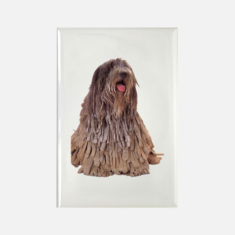 Bergamasco Sheepdog Sitting Rectangle Magnet (100