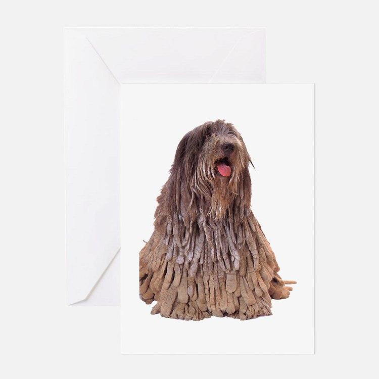 Bergamasco Sheepdog Sitting Greeting Card