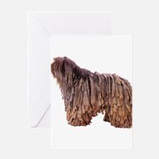 Bergamasco Sheepdog Greeting Card