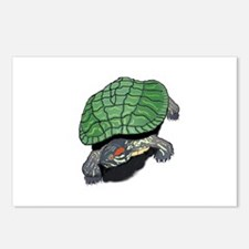 Red Eared Slider (Turtle) Postcards (Package of 8)