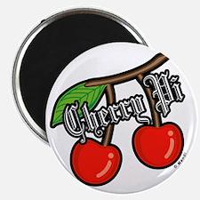 Cherry Pi Magnet