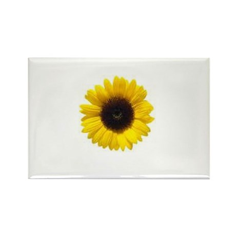 Sun Flower Rectangle Magnet (10 pack)