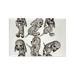 Dalmation Puppies Rectangle Magnet (100 pack)