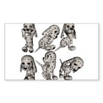 Dalmation Puppies Rectangle Sticker 50 pk)