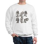 Dalmation Puppies Sweatshirt