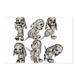 Dalmation Puppies Postcards (Package of 8)